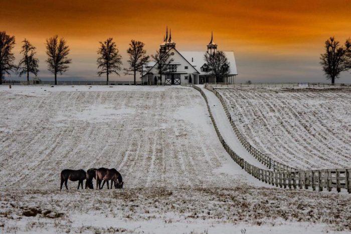 White Winter Snow Globe