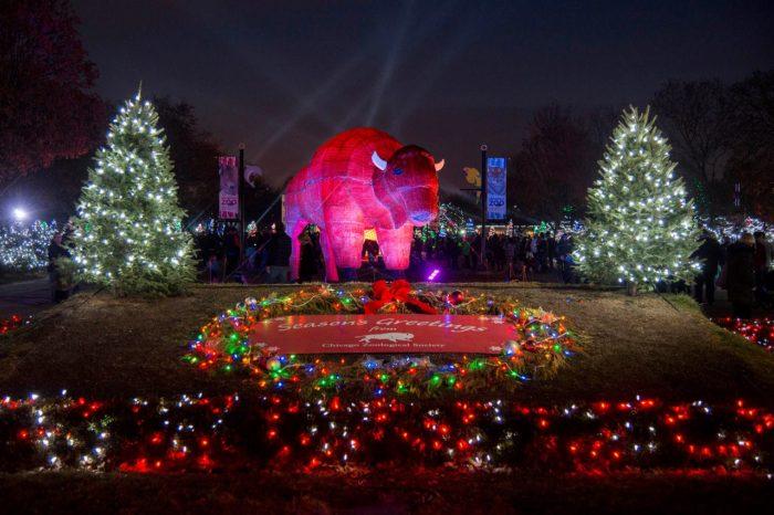 Chicago Zoo Lights 2017