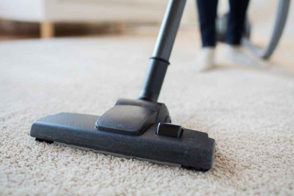 Image Result For How Much Does It Cost To Have Your Carpet Cleaned