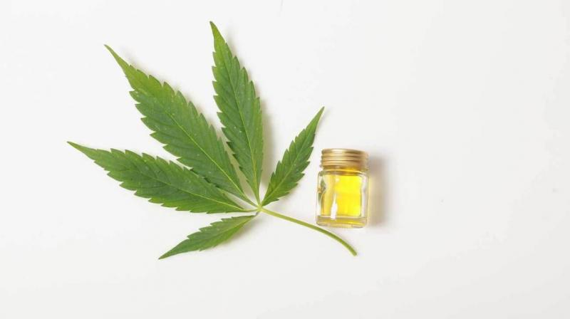 Global CBD Massage Oil Market 2020 | Topshelf News