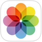 Фотографии значок приложения ОС IOS
