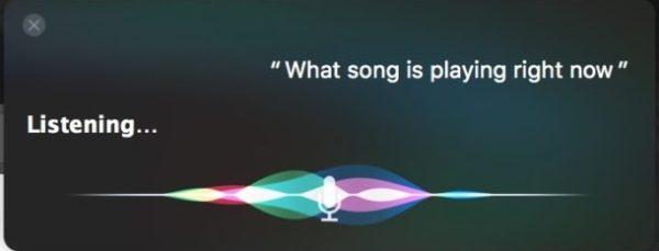 Определите, какая песня играет на Mac с помощью Siri