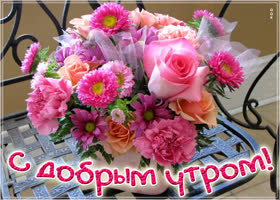 Картинка доброе утро с полевыми цветами - Скачать ...