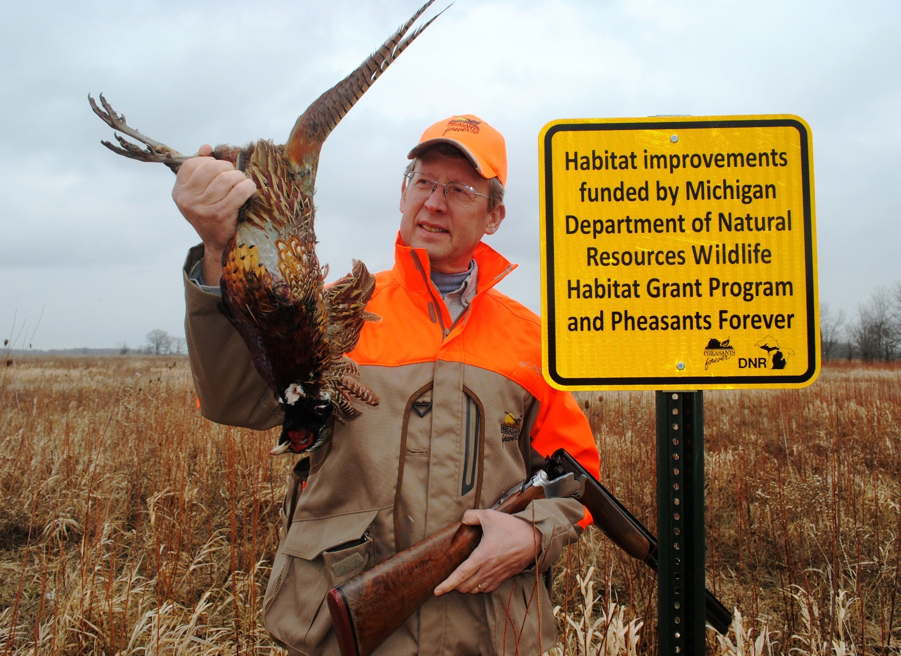 Michigan Pheasants Getting Big Upgrade To Help Restore Populations