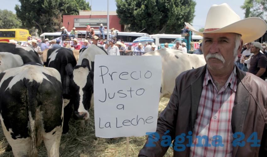 """Productores de leche de Jalisco acusaron al gobierno de """"corrupto"""" y """"sin escrúpulos"""", puesto que compra leche de mala calidad """"para llenar sus bolsillos a costa de la salud de los consumidores, y provoca la quiebra de muchísimos ganaderos de México que sí producimos leche de muy buena calidad""""/Foto: Cortesía"""