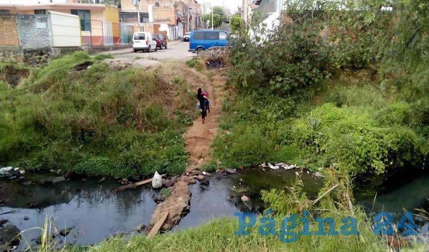 La UdeG encargará a alumnos del CUAAD la realización de proyectos para combatir la contaminación y contener los riesgos de inundaciones que se padecen en el río de Tepatitlán; las mejores propuestas se presentarán a especialistas de la zona y autoridades municipales para implementarlas lo más pronto posible/Fotos: Cortesía