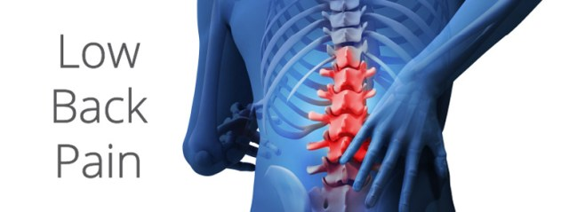 Hasil gambar untuk Low back pain