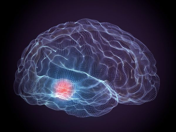 In Parkinson's Disease Mouse Study, Molecule Protects ...