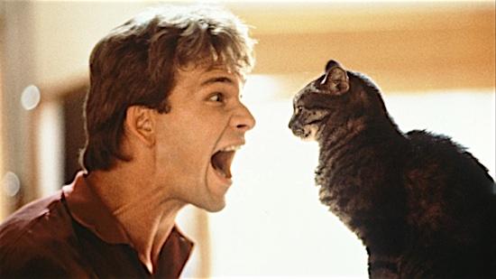 92-Ghost-Floyd-100-Best-Cats.jpg
