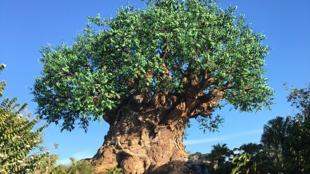 The 10 Best Attractions at Disney s Animal Kingdom    Travel     The 10 Best Attractions at Disney s Animal Kingdom
