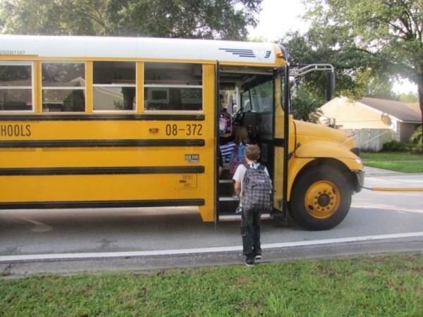 Update: Weather Delays Hillsborough Magnet School Buses ...