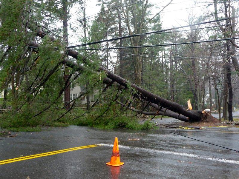 UPDATED Storm Wallops Darien; Thousands Powerless For Days