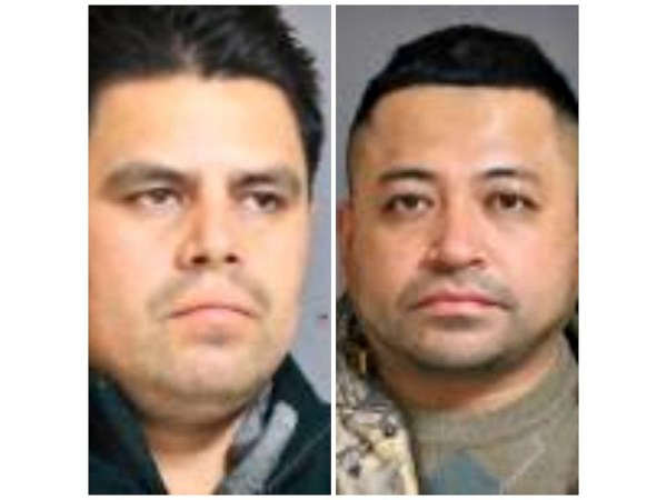 Duo Stole $30,000 Worth of Hay from Colley's Windswept ...