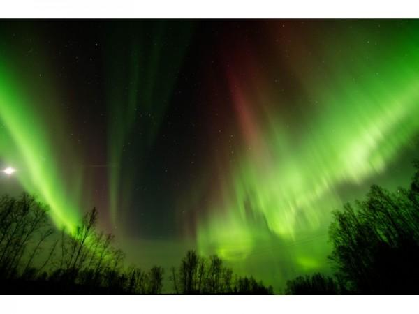 Northern Lights Nj