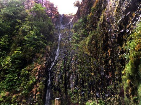 Madeira - 25 fontes3