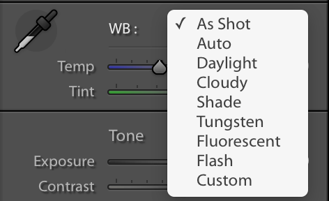 White Balance Lightroom Options