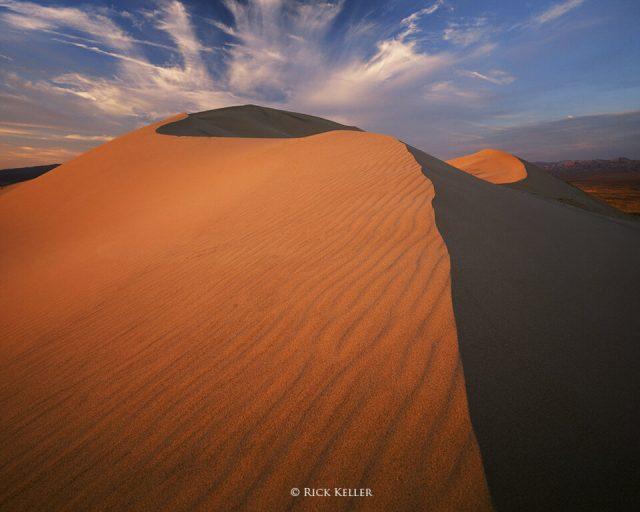 Kelso Dunes, Mamiya 7II, 43mm f/4.5, Fujichrome Velvia 50