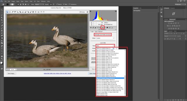 Adobe Camera RAW Profile