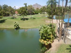 5102 N 31ST Place, 446, Phoenix, AZ 85016