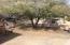 14002 N 57TH Way, Scottsdale, AZ 85254