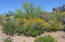 36549 N 105TH Place, 224, Scottsdale, AZ 85262