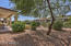 Lush landscape and fruit trees make this backyard a desert oasis