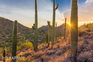 0 E Desert Hills Drive, -, Cave Creek, AZ 85331