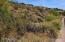 15811 N NORTE Vista, 66, Fountain Hills, AZ 85268