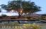 11969 N FANTAIL TRAIL Trail, Casa Grande, AZ 85194