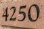 4250 E CASITAS DEL RIO Drive, Phoenix, AZ 85050