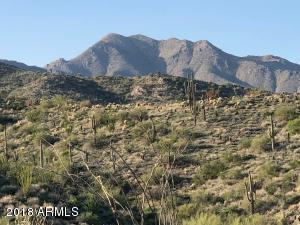 13811 E COYOTE Way, 52, Fountain Hills, AZ 85268