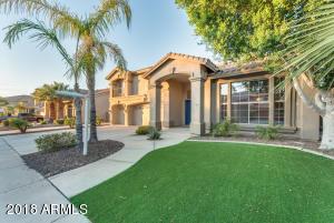 13316 W ANNIKA Drive, Litchfield Park, AZ 85340
