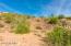 9426 N SOLITUDE Canyon, 37, Fountain Hills, AZ 85268