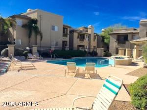 1880 E MORTEN Avenue, 120, Phoenix, AZ 85020