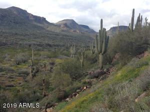 42020 N OLD STAGE Road, Cave Creek, AZ 85331