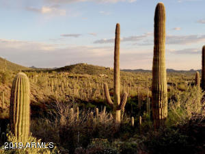43000 N SIERRA VISTA Road, 4, Cave Creek, AZ 85331