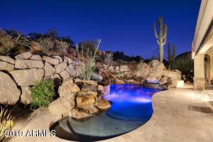 Iconic view with saguaro