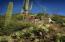 41927 N SAGUARO FOREST Drive, Scottsdale, AZ 85262