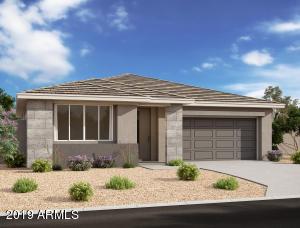 816 E AMBERWOOD Drive, Phoenix, AZ 85048