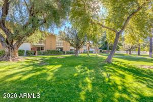 6125 E INDIAN SCHOOL Road, 179, Scottsdale, AZ 85251