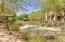 19475 N GRAYHAWK Drive, 1154, Scottsdale, AZ 85255