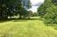 View to backyard
