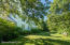 Lush landscape embraces rear of home