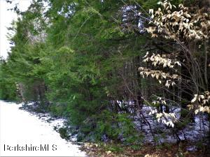Lot #40.24 Stoney Brook Rd, Becket, MA 01223