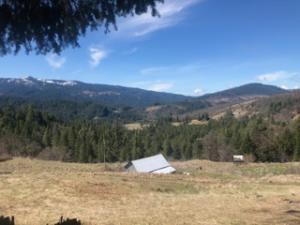 0000 Lamb Creek Road, Mad River, CA 95552