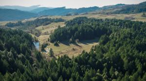 ±160 Acres Butte Creek Road, Kneeland, CA 95549