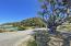 98 Roundhouse Creek Road, Trinidad, CA 95570