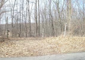 0 Olds Road, Onondaga, MI 49264, ,Vacant Land,For Sale,Olds,235119