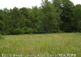 0 Olds Road, Onondaga, MI 49264, ,Vacant Land,For Sale,Olds,240147