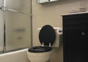 5 9 Donna Court,Staten Island,New York,10314,United States,1 Bedroom Bedrooms,4 Rooms Rooms,1 BathroomBathrooms,Res-Rental,Donna,1124221